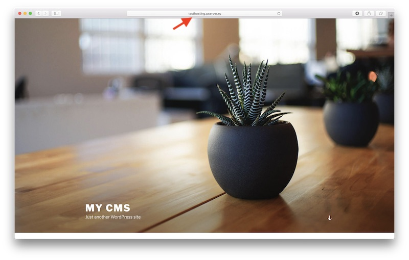 How to install CMS on the hostin